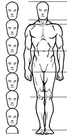 How to Draw the Correct Proportions of the Human Head